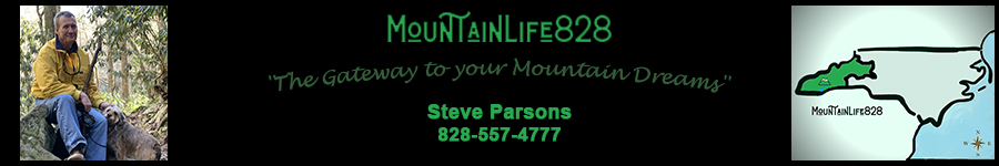 Steve Parsons, Real Estate Broker - MountainLife828